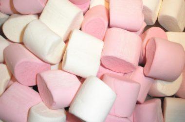 pink & white mallow